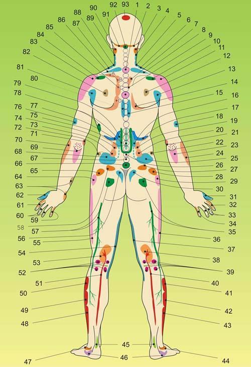 1.Нарушения в костной системе.