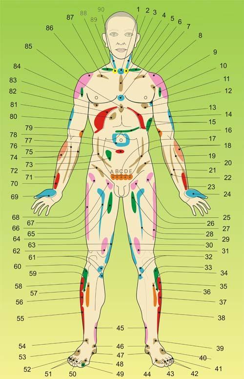 Висцеральный массаж - массаж внутренних органов человека.